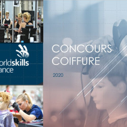 Concours Wordlskills Lppc picture